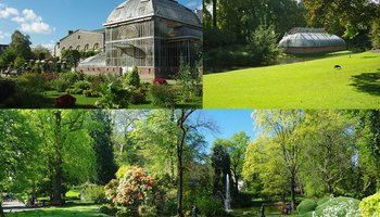 Md photos jardin des plantes